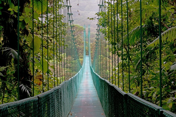 Costa-Rica-Bridge